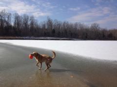Sparta Walks on Lake